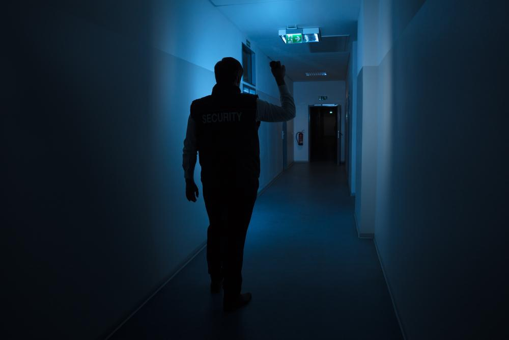 Security man in corridor with torch